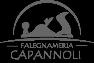 Falegnameria Capannoli